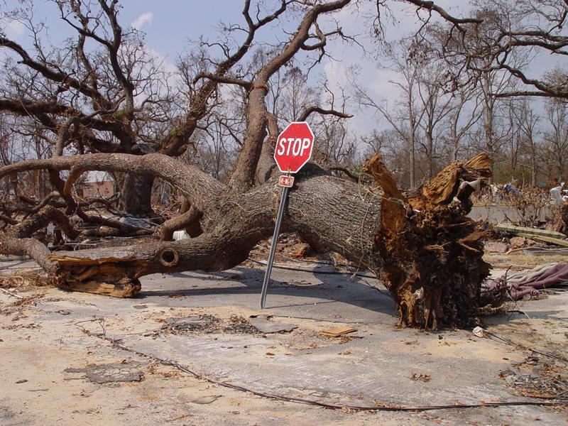 hurricane katrina flood damage