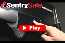 MasterLock Sentry Promotion video